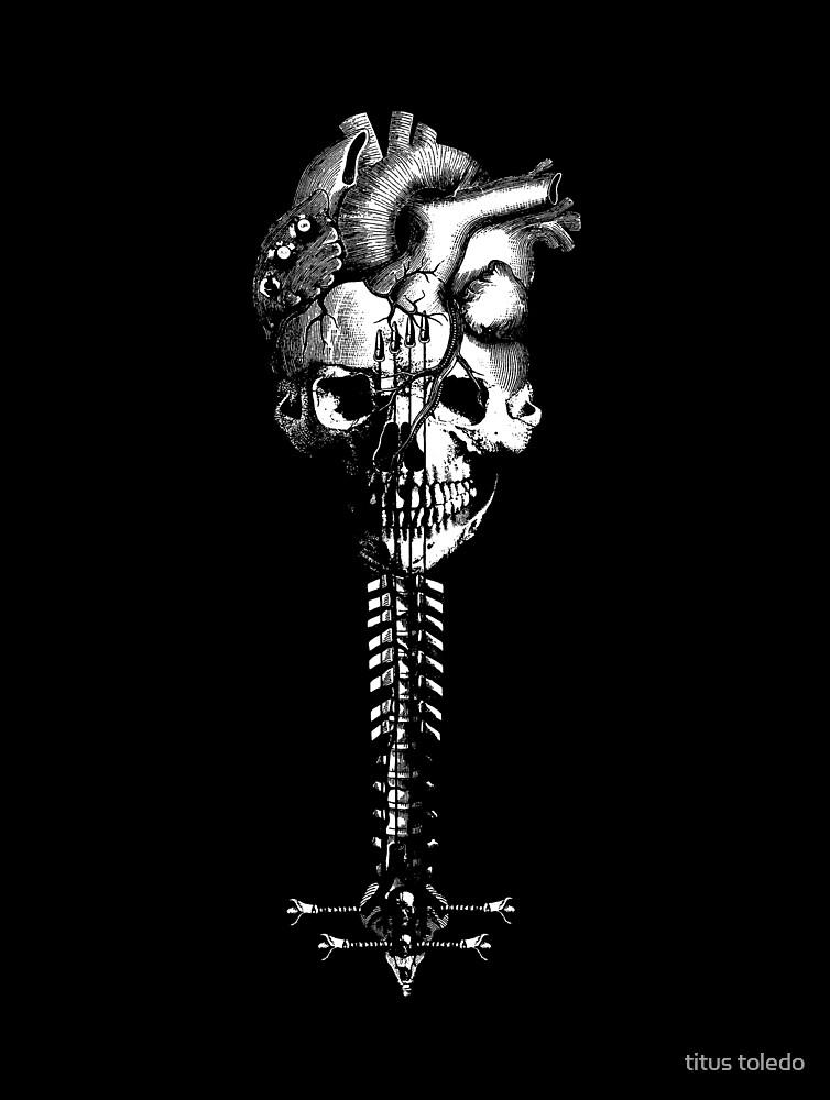 beat, bone & bass by titus toledo