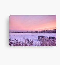 Lilac dawn Canvas Print