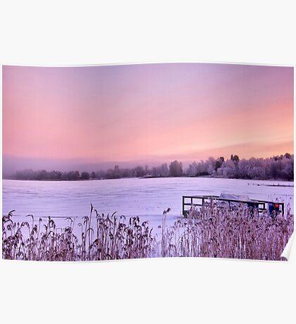 Lilac dawn Poster
