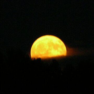 Golden Moon by mlcltd