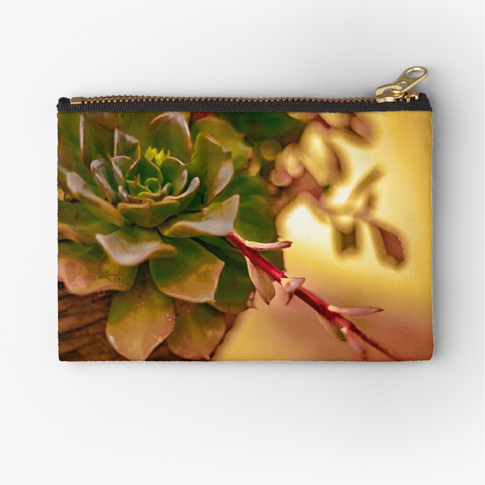 SHOOTING STAR Zipper Pouch