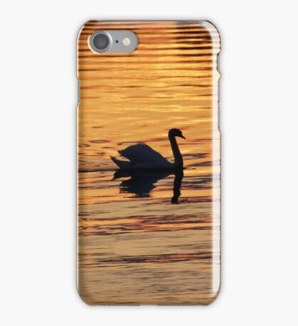Swan on golden pond iPhone Case/Skin