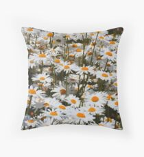 A Field of Oxeye Daisies Throw Pillow