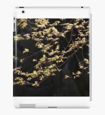 Acer Branches iPad Case/Skin