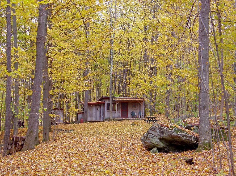 The Cabin by marchello