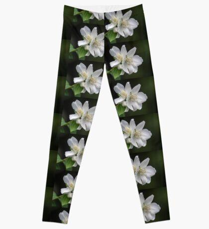White Spring Flowers Leggings