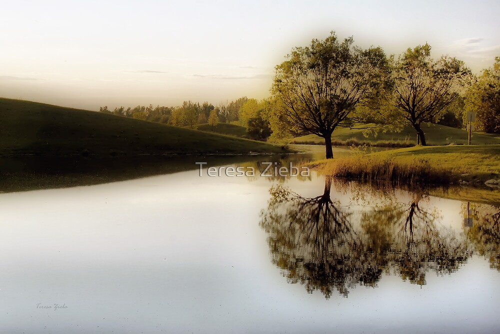 Tranquility by Teresa Zieba