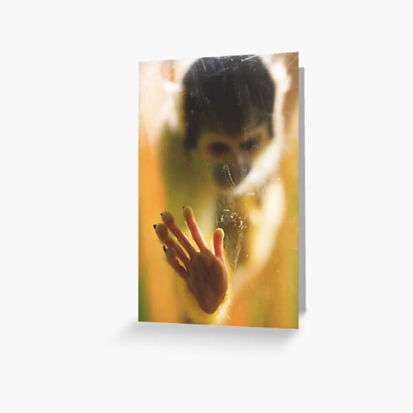 Bolivian Squirrel Monkey Greeting Card
