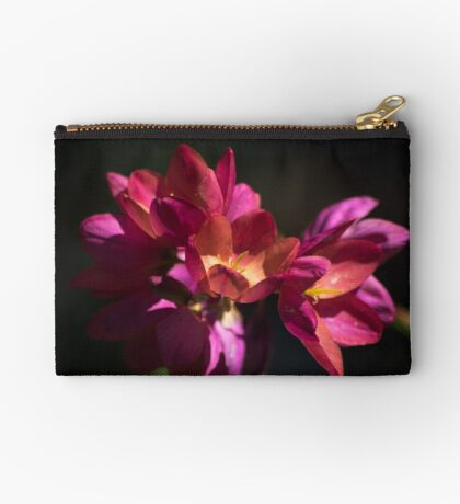 Flowers of Red and Pink Studio Pouch