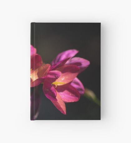 Flowers of Red and Pink Hardcover Journal