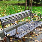 Park Bench by Lesliebc