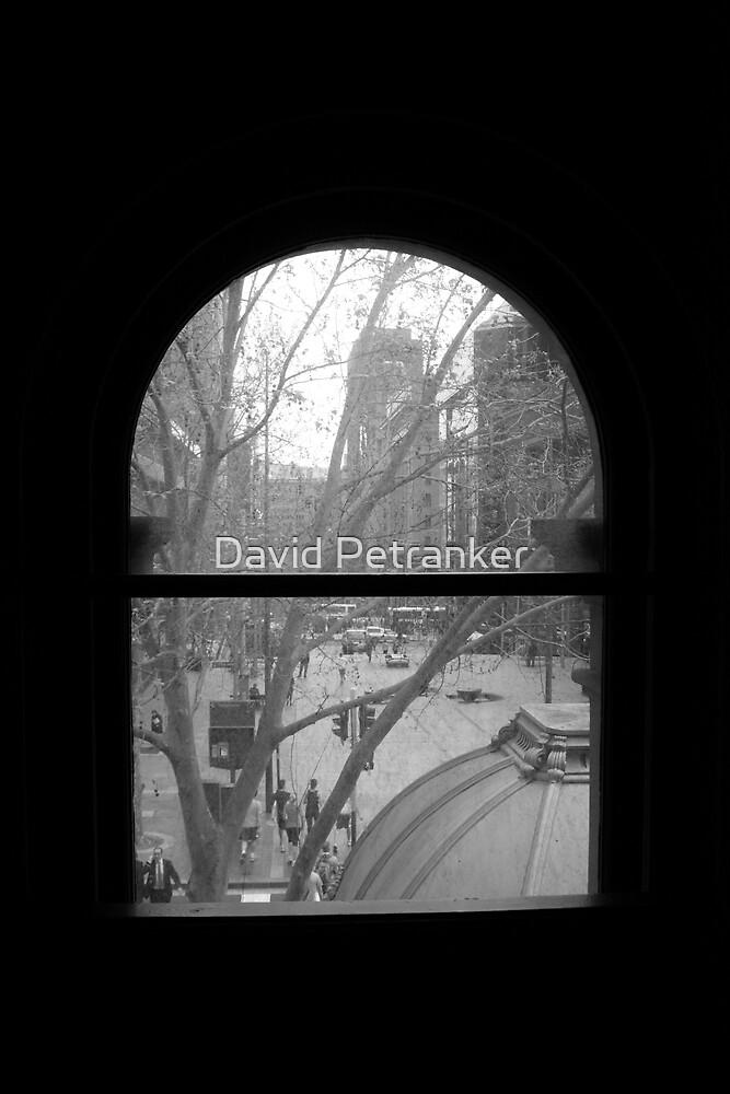 Winter Winow by David Petranker