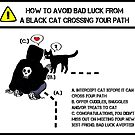 Black Cat Luck by Muninn