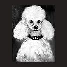 Charlie the Poodle  by Virginia McGowan