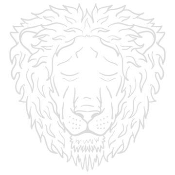 Lion: DJ Khalid by lukesauds