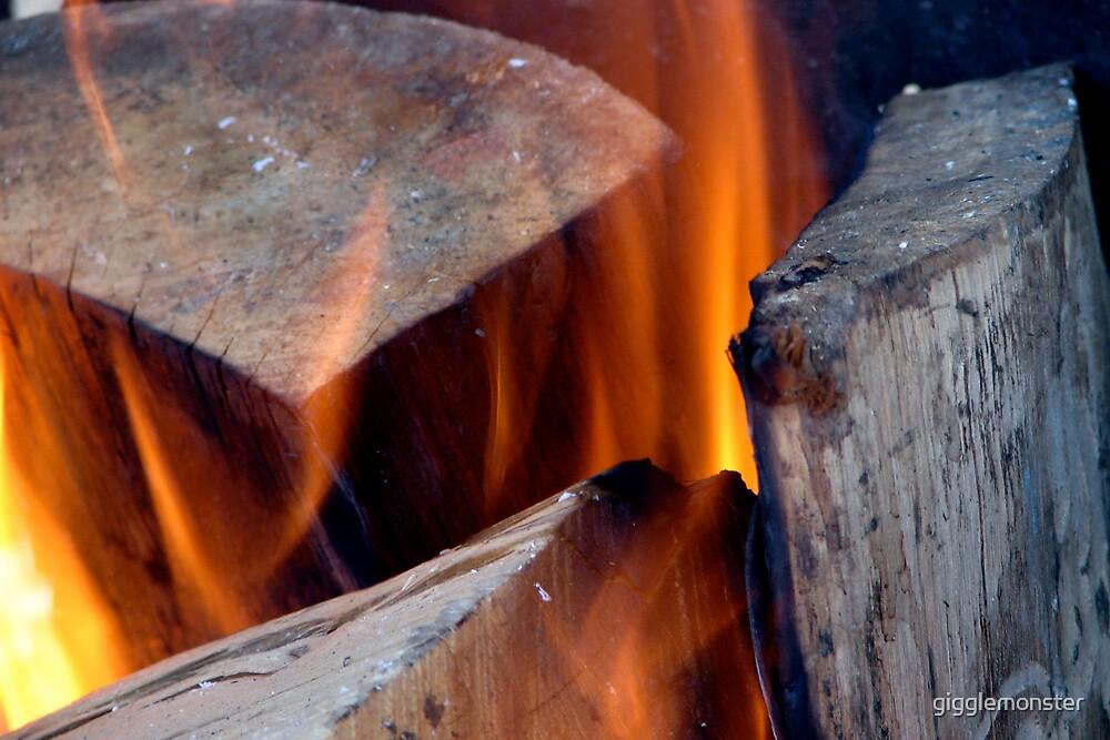 Light My Fire by gigglemonster