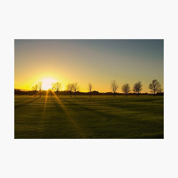 Sunset in the Phoenix Park, Dublin Photographic Print