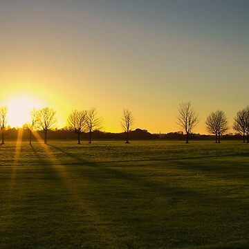 Sunset in the Phoenix Park, Dublin by IAmPaul