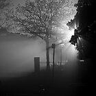 Foggy Walk by Crispin  Gardner IPA