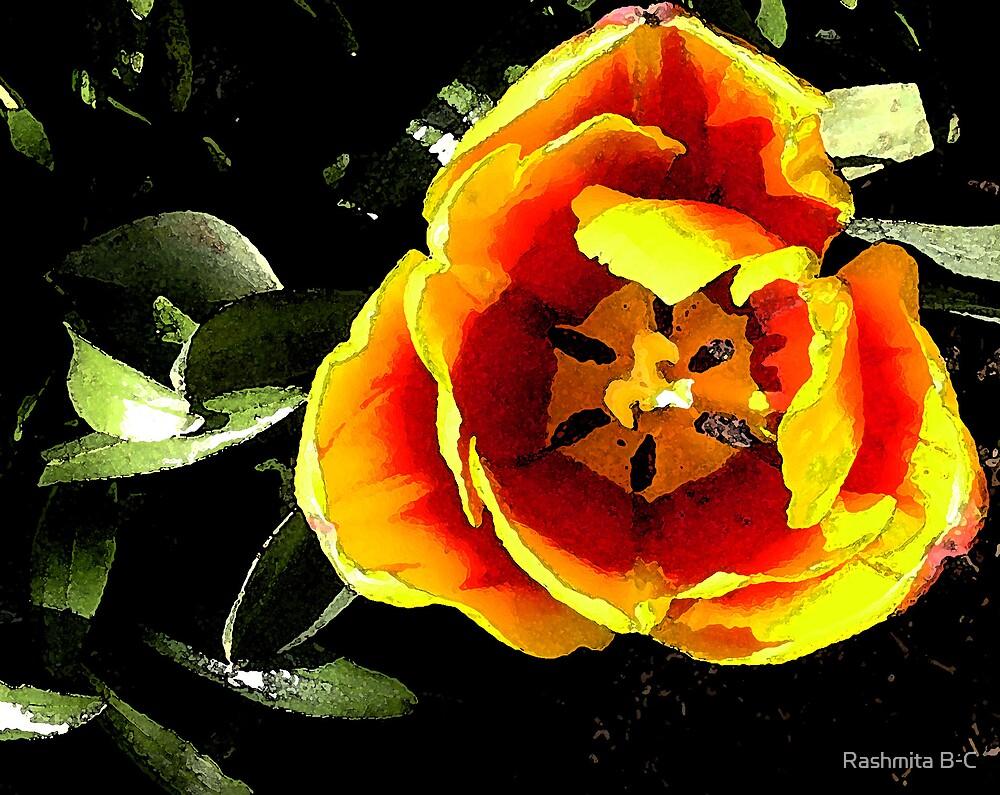 Colours of Beauty by Rashmita B-C
