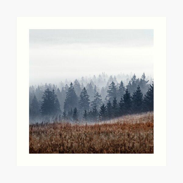 Lost In Fog Art Print