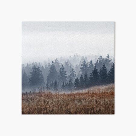 Lost In Fog Art Board Print
