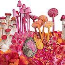 Pink Biodiversity, Mushrooms, Crystals, Plants by Stephanie KILGAST