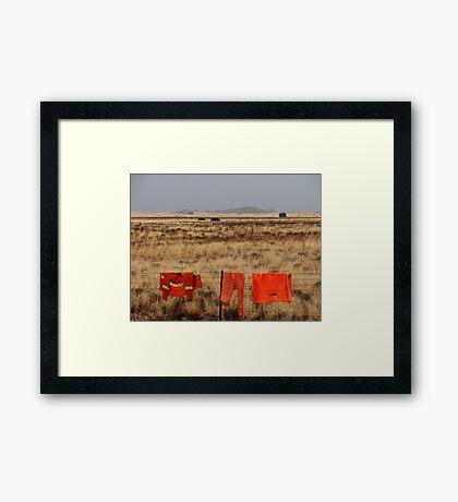 Orange on the landscape Framed Print