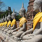 Row of Buddha statues, Ayutthaya, Thailand by Petr Svarc