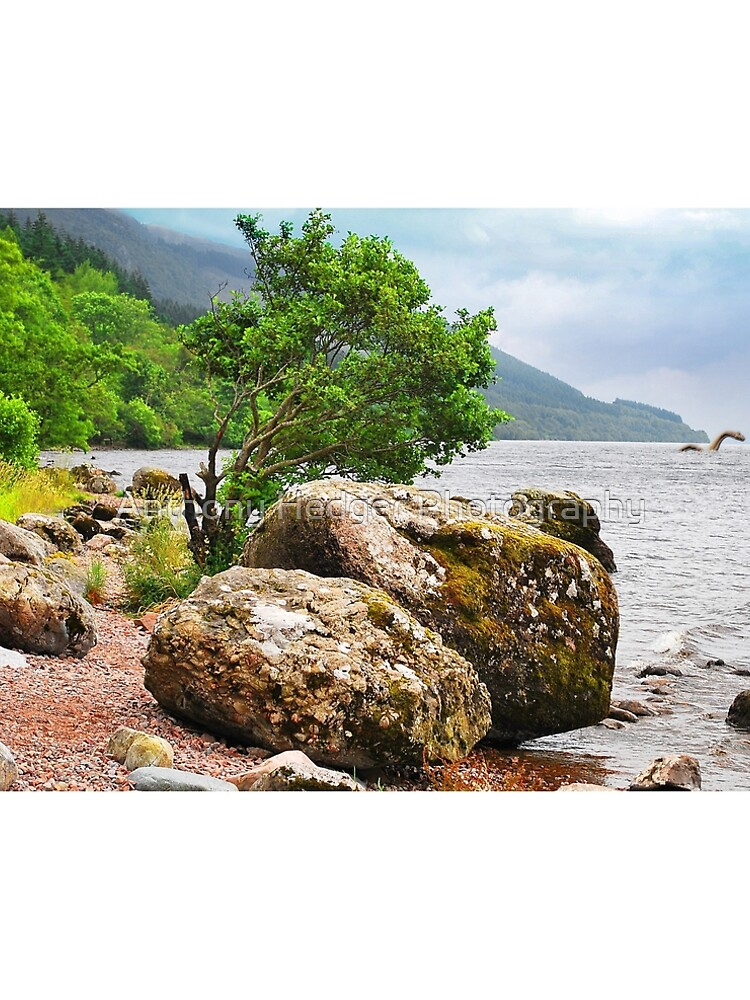 On the shores of Loch Ness - AGAIN by anthonyhedger