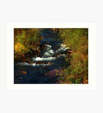Small River Rapids Art Print