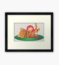 yellow kitty playing with wool Framed Print