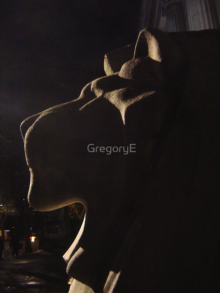 Leo9 by Night by GregoryE