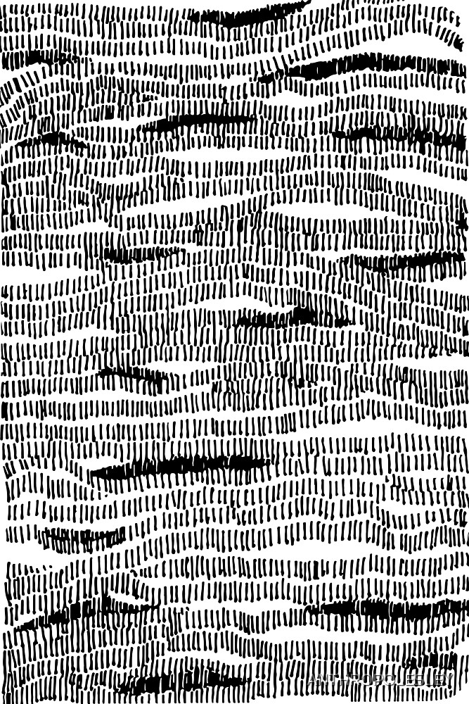 Train to Mystic #Lines #B+W #Sketch #Drawing #Camouflage #Abstract #Stripes #Contours #Wood #Water #Pattern #Woven #knitted #Map by ANTHROPOLESLEY