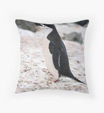 "Chinstrap Penguin ""Pygoscelis antarcticus"" Throw Pillow"