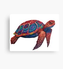 Hand-drawn Colorful Sea Turtle Canvas Print