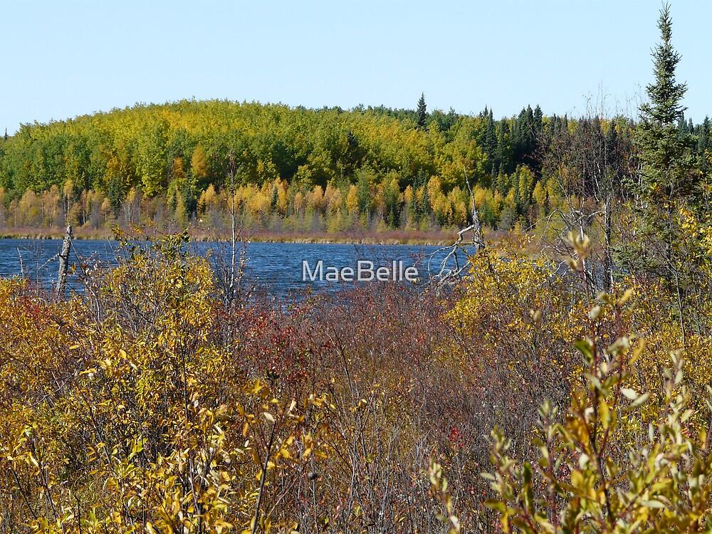 Horseshoe  Lake.NE Sask. Canada by MaeBelle