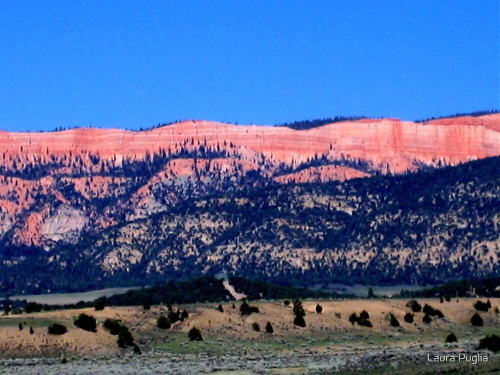 Kodachrome Basin State Park, Utah by Laura Puglia