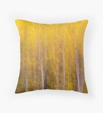 Poplar Trees with yellow leaves in autumn Throw Pillow