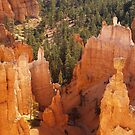 Thor's Hammer at Bryce Canyon by Alex Cassels