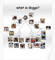 Doggo chart Poster