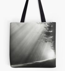 Redwood National Forest Tote Bag