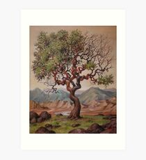 Tree of Knowledge  Art Print