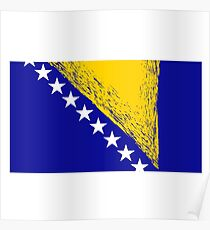 Bosnia and Herzegovina Flag Isolated on White Background. Poster
