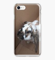 French lop rabbit in a box creamed and brown patched fur iPhone Case/Skin