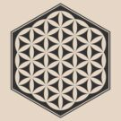 Hex Filled Flower of Life (light background) by hexagrahamaton