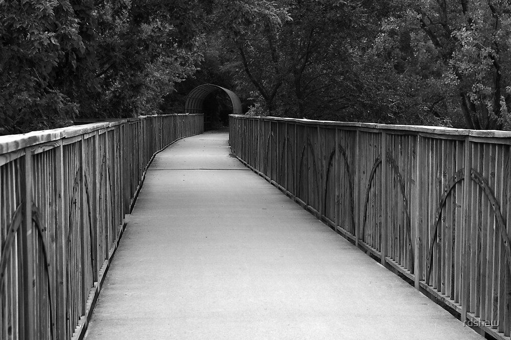 The Bicycle Bridge by rdshaw