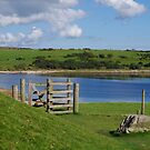 Gateway To The Lake (Colliford, Cornwall) by lezvee