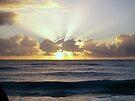 Sun Burst by W E NIXON  PHOTOGRAPHY