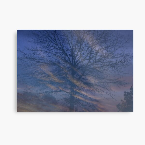 Morning Swirl Metal Print